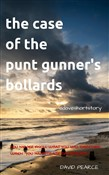 The Case of the Punt Gunner's Bollards