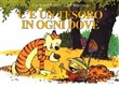 Calvin and Hobbes. C'è un tesoro in ogni dove