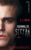 journal de stefan 1