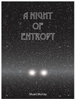a night of entropy