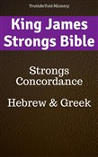 King James Strongs Bible