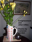 Enlightenment and other trifles: poems