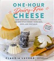 one-hour dairy-free chees...