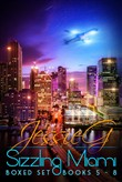 Sizzling Miami Boxed Set
