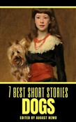 7 best short stories: Dogs
