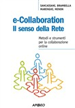 e-collaboration. il senso...