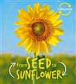lifecycles: seed to sunfl...