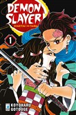 Demon slayer. Kimetsu no yaiba. Vol. 1