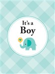 it's a boy: the perfect g...