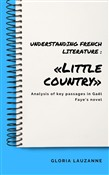 Understanding french literature : «Little country»