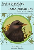 Just a blackbird - The story about growing up / Jedan obican kos - Prica o odrastanju