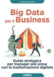 Big Data per il Business