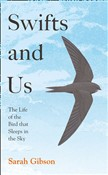 Swifts and Us: The Life of the Bird that Sleeps in the Sky