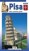 pisa. new practical guide