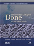 Mineralized Collagen Bone Graft Substitutes