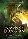 Bronze Dragon - Riders of Fire - A Prequel Novelette (A Dragons Realm Story)