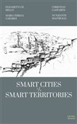 Smart cities vs smart territories