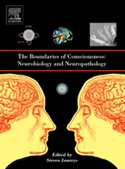 The Boundaries of Consciousness: Neurobiology and Neuropathology