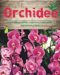 Image of Orchidee - David Squire