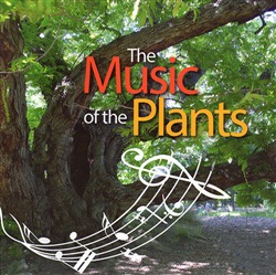 Image of The music of the plants - Ananas Esperide