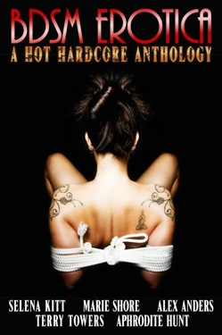 BDSM Erotica: A Hot, Hardcore Anthology