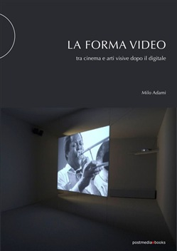 La forma video. Tra cinema e arti visive dopo il digitale