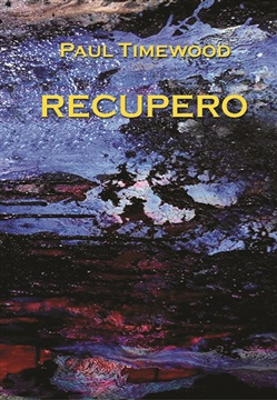 Image of Recupero - Paul Timewood