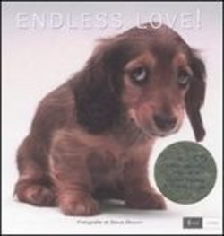 Endless love! Ediz. italiana e inglese. Con CD Audio