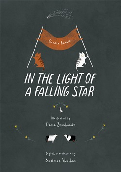 Image of In the light of a falling star. Ediz. illustrata - Claudia Ravaldi