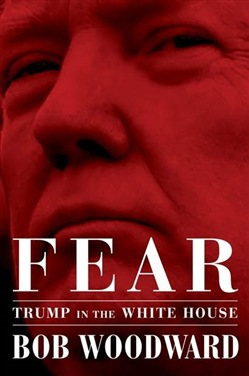 Fear. Trump in the White House