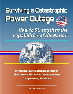 Surviving a Catastrophic Power Outage: How to Strengthen the Capabilities of the Nation - Preventing Severe Cascading Impacts on Critical Sectors Like Water, Communications, Transportation, Healthcare