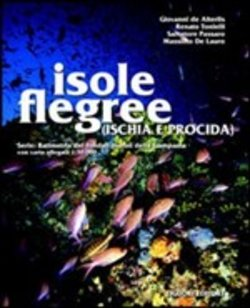 Image of Isole Flegree (Ischia e Procida)