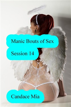 Manic Bouts of Sex: Session 14