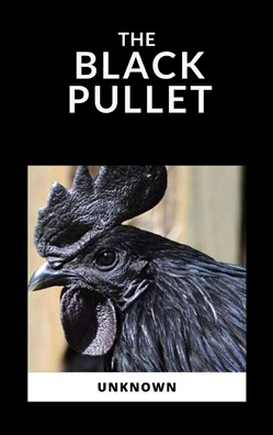 Image of The Black Pullet eBook - Anonymous Author