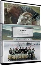 Rams (New Edition)