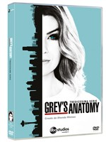 Grey's Anatomy - Stagione 13 (6 Dvd)