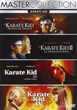 karate kid quadrilogia (4...