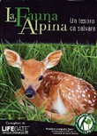 La Fauna Alpina (dvd+booklet)