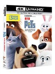 Pets - Vita da Animali (Blu-Ray 4k Ultra Hd+blu-Ray)