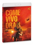 Come Vivo Ora - How I Live Now