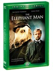 the elephant man (indimen...