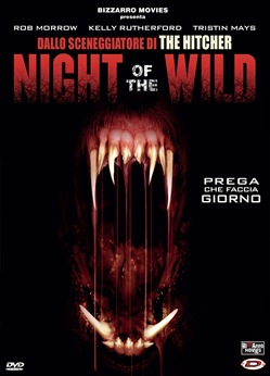 Image of Night Of The Wild