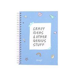 MR WONDERFUL Notebook - Crazy ideas & other genius stuff 22 x 30